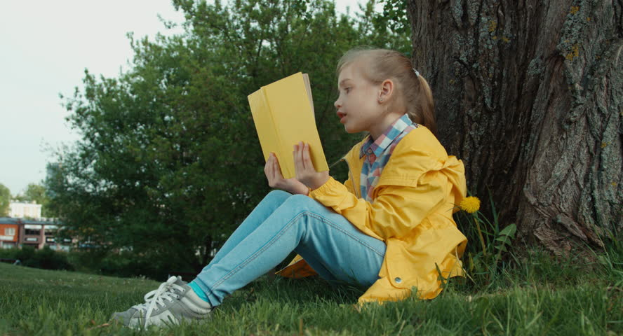Child reading a book sitting under a tree | Shutterstock HD Video #10038434