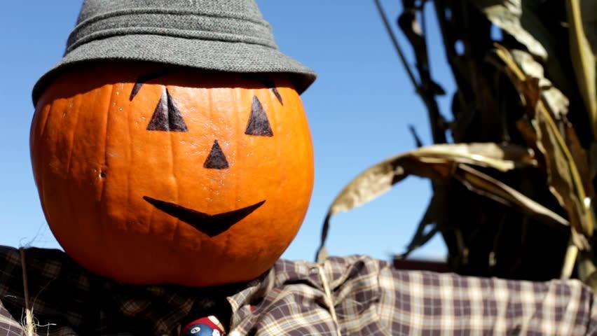 Header of scarecrow