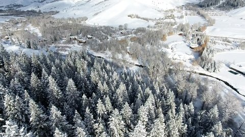Snow Covered Trees in a Valley for Ski Winter Snowing Aerial Drone Shot