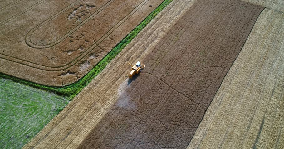 Combine harvester, Cinema 4k aerial orbit view around a trenching machine, harvesting on a field, on a sunny autumn day, in Uusimaa, Finland