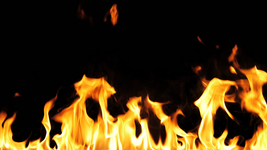 Fire Flames Igniting And Burning - Slow Motion. A line of real flames ignite on a black background. Real fire. Transparent background. PNG + Alpha