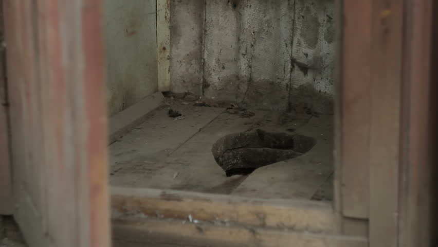 Street wooden toilet in a country village | Shutterstock HD Video #1006874764