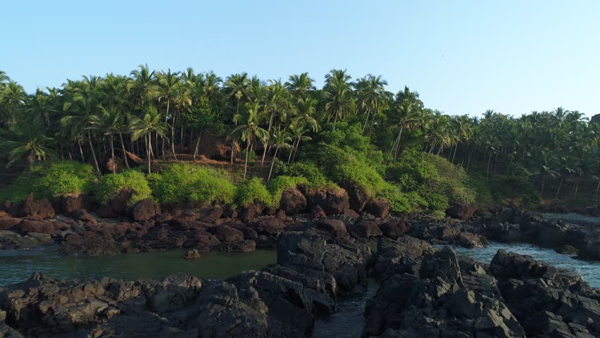 Thickets of coconut palms on the shore of an uninhabited tropical island. Waves breaking on coastal reefs.The camera slowly glides at a low altitude. Paradise landscape. Aerial view.