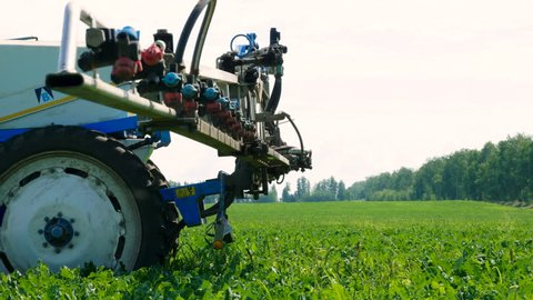 Tractor preparing for spraying the plants of sugar beet from pests, diseases. 4K