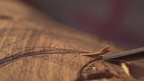 Close up amazing woodcarving rapid slow motion
