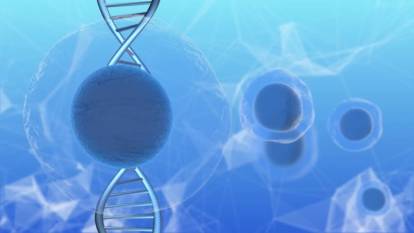 Stem cell replacement cells and tissues to treat diseases