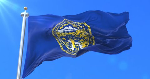 Flag of american state of Nebraska, region of the United States, waving at wind - loop