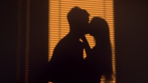 Silhouette of young couple kissing