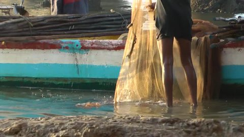 Fisherman Collecting Fish From Net After Returning Land at, Ennore Creek, North Chennai, Tamil Nadu, India
