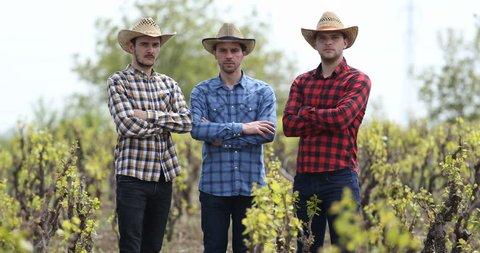 Young Group of Farmer Men Looking Camera Vineyard Field Plantation Presentation