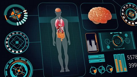 Human body with futuristic touch screen scan interface in 3D x-ray available in 4k UHD FullHD and HD video animation footage