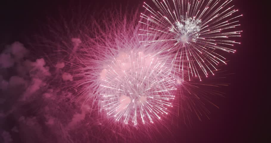 Video of beauty colored firework scene at night | Shutterstock HD Video #1008289594