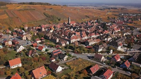 Aerial view of autumn Riquewihr vineyards, Alsace Wine Route, France.
