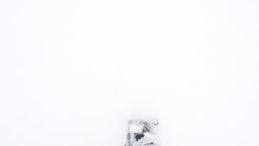 Winter trekking POV slow-mo 1920X1080 HD video - Waterproof hiker boots in the high snow slow motion 1080p FullHD footage | Shutterstock HD Video #1008677314
