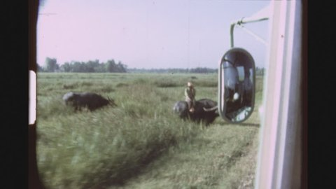 THAILAND, RATCHABURI REGION, MARCH 1977. Five Shot Sequence Of A Young Native Man Riding A Bufallo In A Green Field And A Bus Stopping, Tourists Getting Out And Petting The Bull.