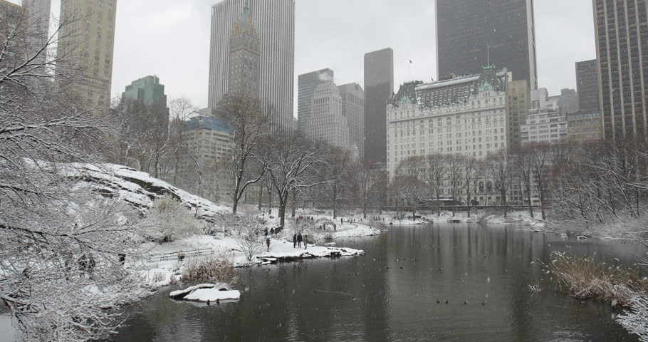 New York City Central Park in snow | Shutterstock HD Video #1008879674