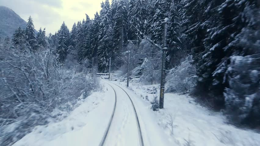 Traveling with train trough winter forest