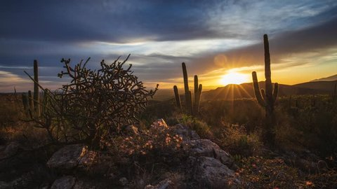Three axis time lapse clip of the sun setting over Tucson, Arizona. Acacia flowers and saguaro cactus are visible as the camera moves.