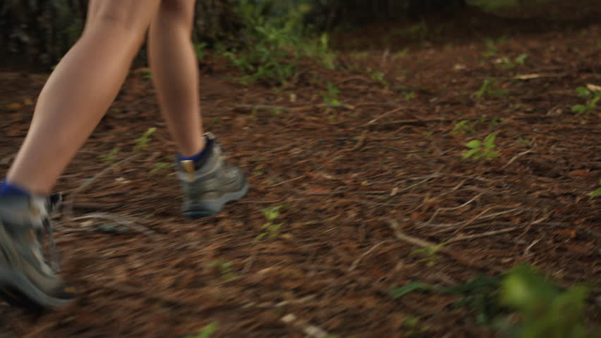 Woman's legs and shoes tramping through forest #1009937504