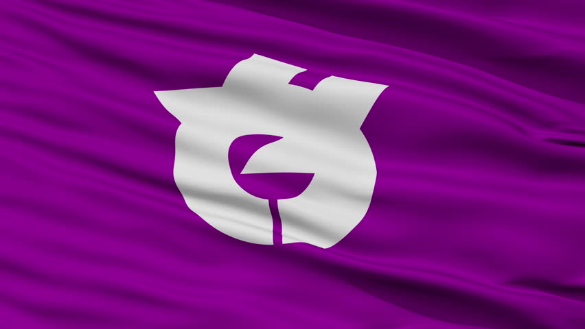 Yachiyo close up flag, Chiba prefecture, realistic animation seamless loop - 10 seconds long