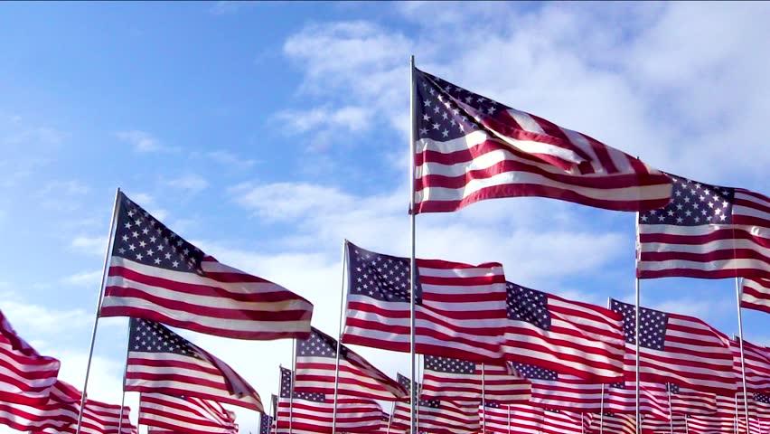 Nice Crowd of American Flags Waving in the Wind | Shutterstock HD Video #1010269604