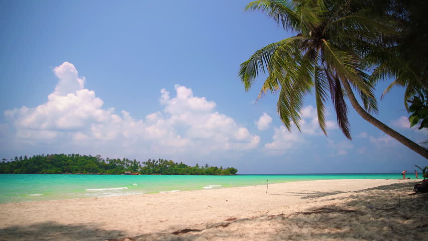 Tropical beach in sunny day | Shutterstock HD Video #1010481104