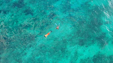 Tulum Beach Mayan Ruins Aerial Footage drone