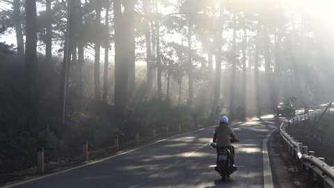 Dalat, Vietnam - Apr 5, 2018. Mountain road with pine trees in early morning in Dalat, Vietnam. Da Lat is located 1500 m above sea level on the Langbian Plateau.