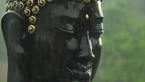 Buddha face in the rain, Buddha head sculpture.