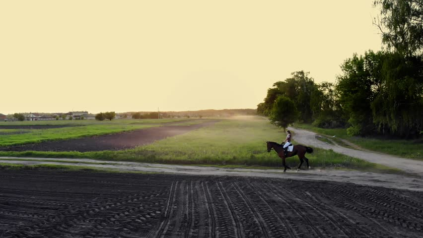 Woman galloping on a brown horse through a field in countryside. young woman riding bay horse.