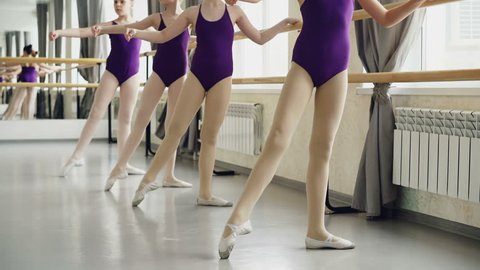 85b1efea7fb7f Little ballet-dancers are practising battement tendu during lesson in ballet  school. Bright bodysuits