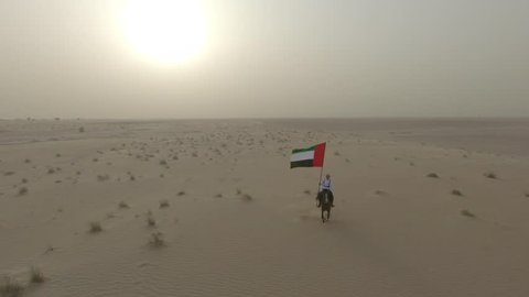 Horse running in the Desert of UAE with Emirate Flag  in the Middle East