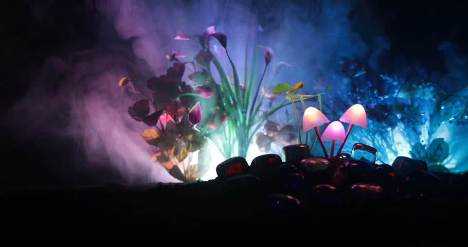 Three fantasy glowing mushrooms in mystery dark forest close-up. Beautiful macro shot of magic mushroom or three souls lost in avatar forest. Fairy lights on background with fog. Slider shot.