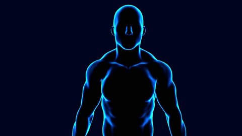 3d animation of a muscular male body anatomy spinning on black background