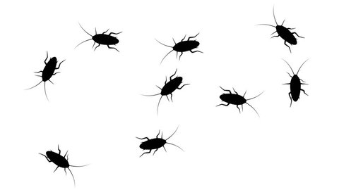 Cockroaches in prohibition sign. Black silhouettes of pests swarm on white background, 3D animation.