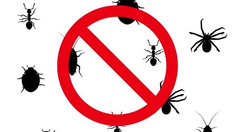 Arthropods in prohibition sign. Black silhouettes of pests creep up on white background. Seamless loop 3D animation.