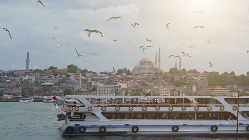Istanbul, Bosporus, Turkey. Seagulls flying over the sea, against the backdrop of the old city