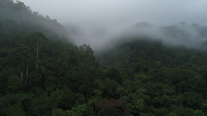 Aerial view of misty Mayan Mountains in Central American jungles