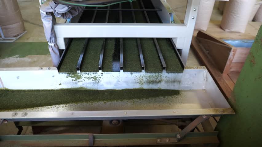 Final process of green tea production--detaching fixed small tea leaves