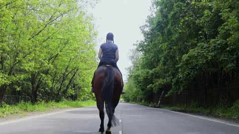 Young woman rides on horse by country road with car at summer day. Slow motion
