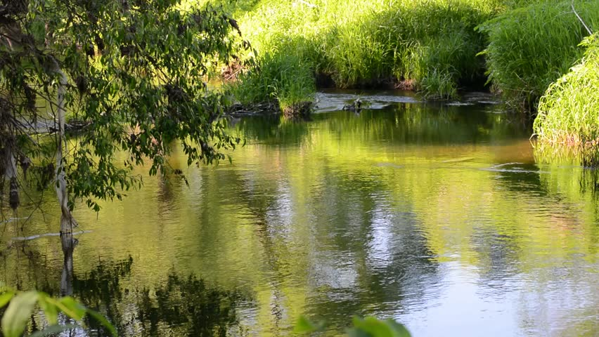 Beautiful river among the green banks of the slowly flowing down, nourishing the soil and the roots of trees, reflecting the green leaves and blue sky