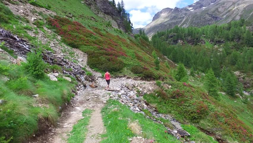 Trekking in mountain, walking on footpath. Sport in Valtellina. | Shutterstock HD Video #1012645004