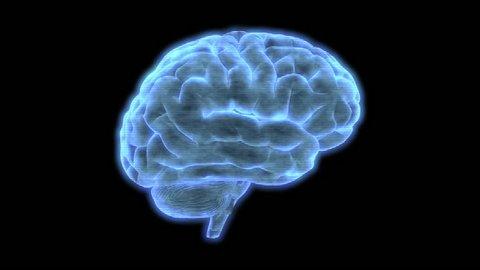Brain 1010: Bad reception HUD element of a holographic human brain rotating (Loop).