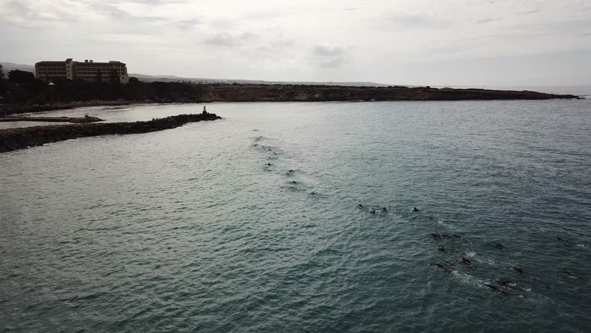 Aerial drone shot of a large group of swimmers competing in a race in the sea near Limassol, Cyprus