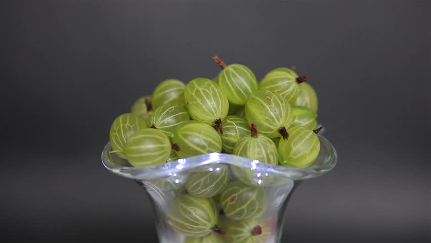 A large large gooseberry in a glass vase on a black background. A withered green berry of gooseberries is picked straight from the bush.