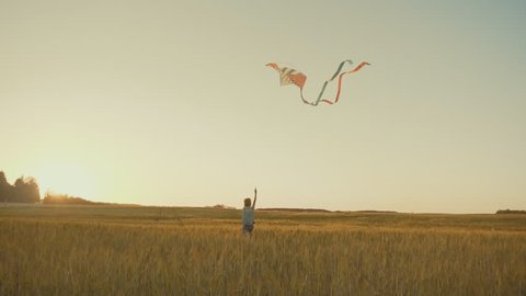 Boy flying a kite in a field at sunset. Slow motion