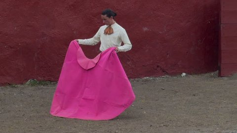 Bullfighter matador working with the magenta and gold cape during the 1st stage of a bull fight - the tercio de varas or the lancing third