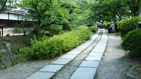 Kyoto, Japan: A pedestrian stone path follows a canal lined with cherry trees.  This path is commonly called the Philosopher's Path.