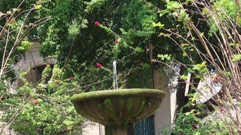 Fountain at the Plaza de Armas, Havana - Cuba