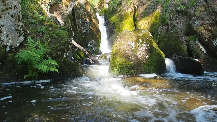 Water Falling Scene: Waterfall in Forest. National Park Travel. Waterfall on mountain stream in the National park. Waterfall green forest river stream landscape.  | Shutterstock HD Video #1013463734